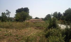 Pula-građevinsko zemljište 2400 m2 sa starom kućom